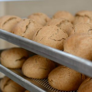 Padaria do Sindicato já produz e distribui 600 pães por dia